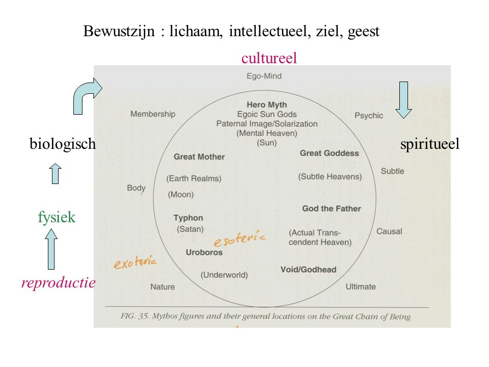 Bewustzijn : lichaam, intellectueel, ziel, geest reproductie fysiek biologisch cultureel spiritueel