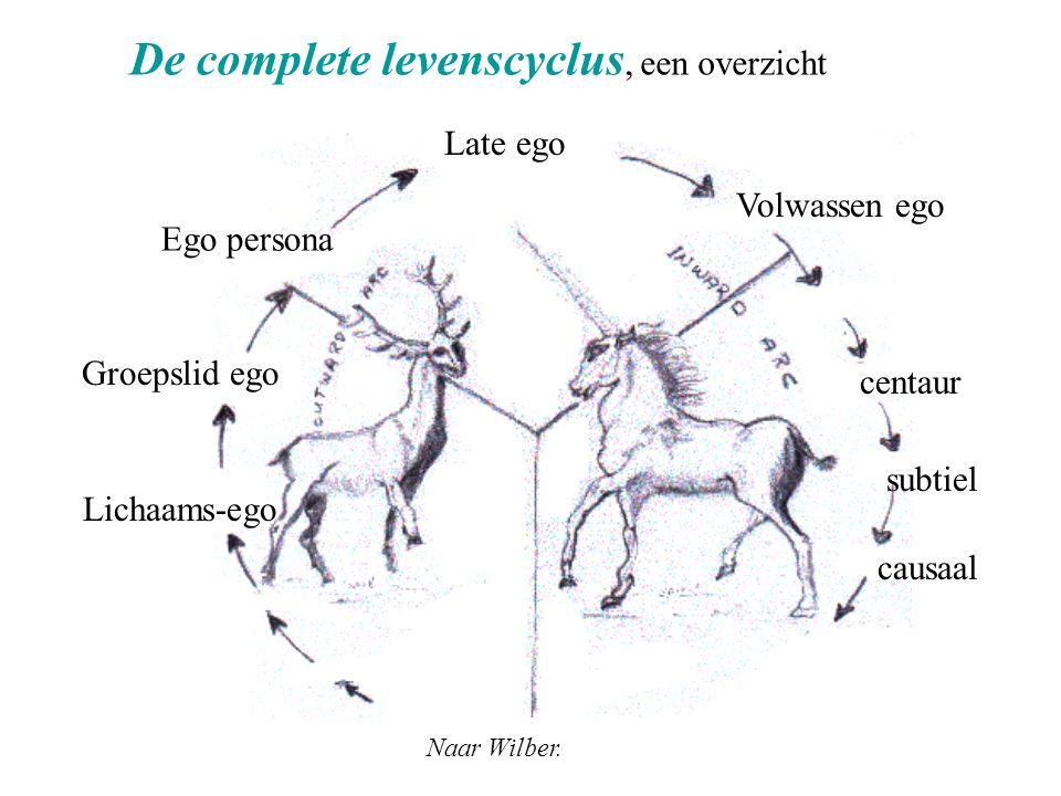 De complete levenscyclus, een overzicht Groepslid ego Ego persona Late ego Volwassen ego centaur subtiel causaal Naar Wilber. Lichaams-ego