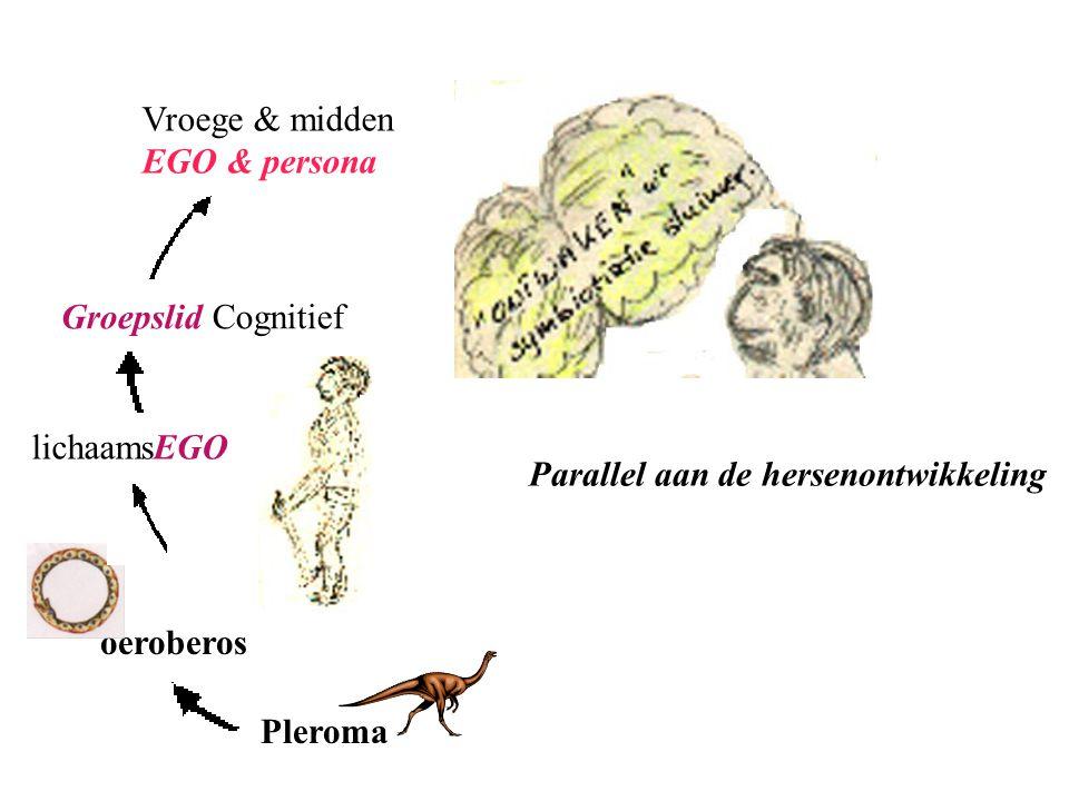 Pleroma oeroberos lichaamsEGO Groepslid Cognitief Vroege & midden EGO & persona Parallel aan de hersenontwikkeling
