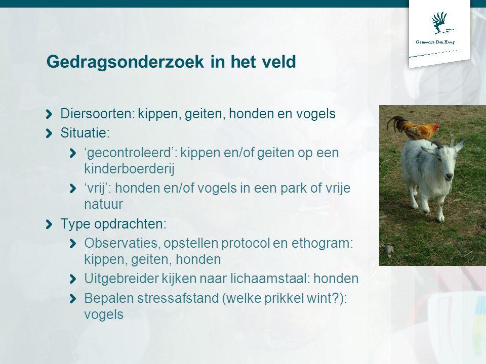 Gedragsonderzoek in het veld Diersoorten: kippen, geiten, honden en vogels Situatie: 'gecontroleerd': kippen en/of geiten op een kinderboerderij 'vrij