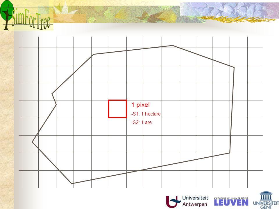 MODEL Initieel systeem -bosstructuur -kwaliteit -bodem -topografie -hist.