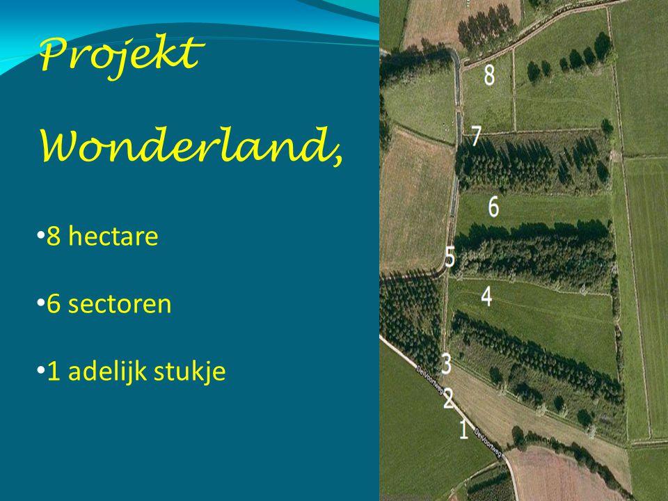 Projekt Wonderland, 8 hectare 6 sectoren 1 adelijk stukje