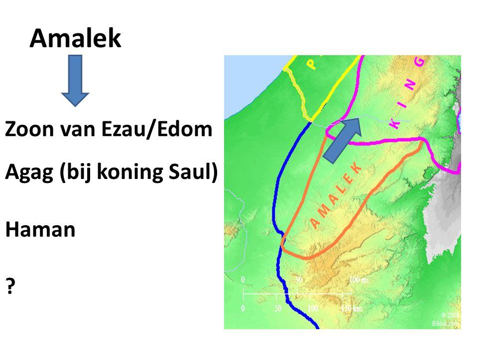 Amalek Zoon van Ezau/Edom Agag (bij koning Saul) Haman ?