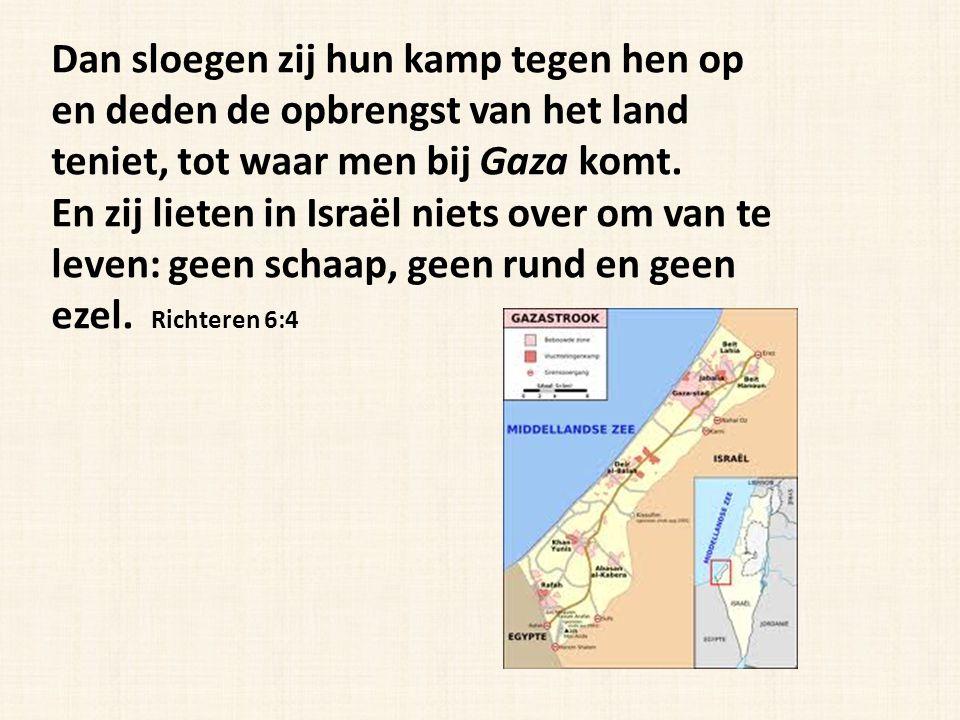 Dan sloegen zij hun kamp tegen hen op en deden de opbrengst van het land teniet, tot waar men bij Gaza komt. En zij lieten in Israël niets over om van