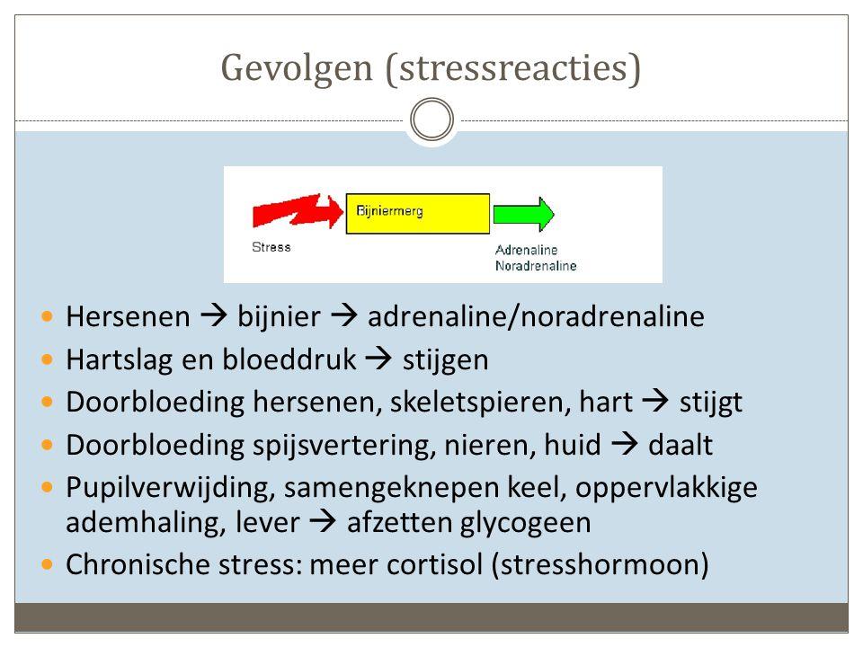 Gevolgen (stressreacties) Hersenen  bijnier  adrenaline/noradrenaline Hartslag en bloeddruk  stijgen Doorbloeding hersenen, skeletspieren, hart  stijgt Doorbloeding spijsvertering, nieren, huid  daalt Pupilverwijding, samengeknepen keel, oppervlakkige ademhaling, lever  afzetten glycogeen Chronische stress: meer cortisol (stresshormoon)