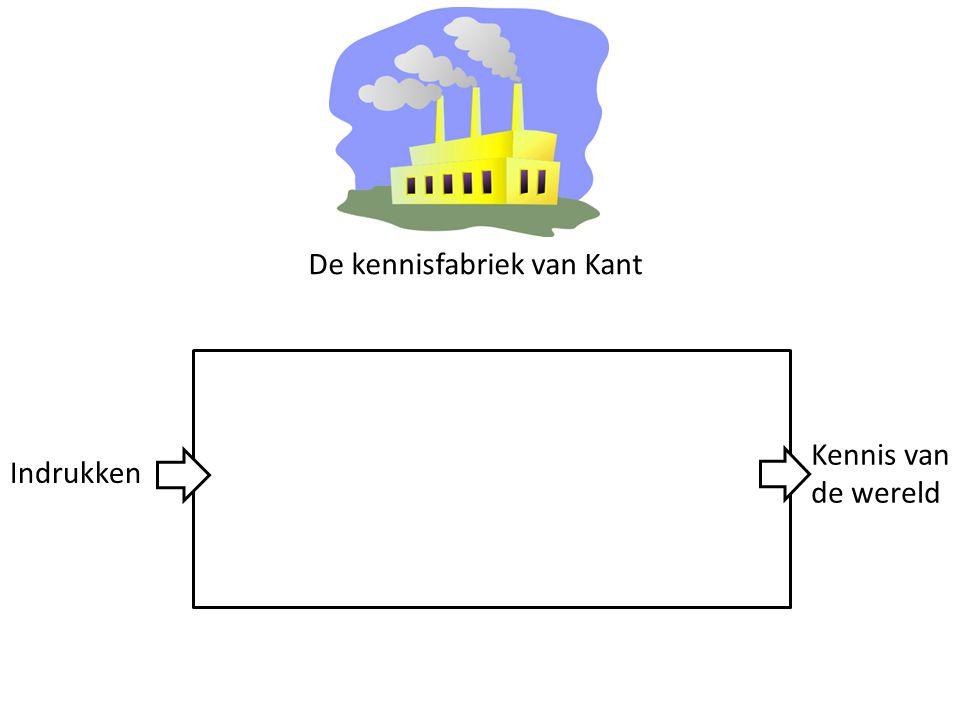 De kennisfabriek van Kant Indrukken Kennis van de wereld