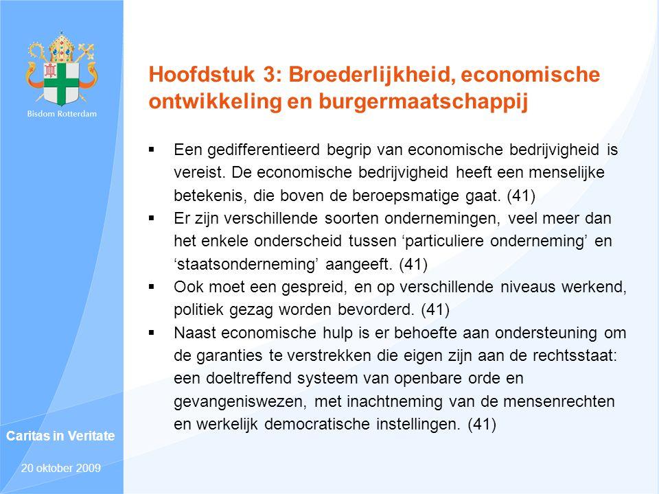 Hoofdstuk 3: Broederlijkheid, economische ontwikkeling en burgermaatschappij  Een gedifferentieerd begrip van economische bedrijvigheid is vereist. D