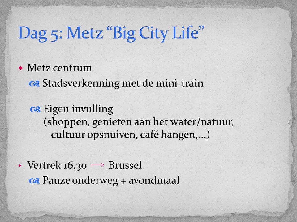 Metz centrum  Stadsverkenning met de mini-train  Eigen invulling (shoppen, genieten aan het water/natuur, cultuur opsnuiven, café hangen,...) Vertrek 16.30 Brussel  Pauze onderweg + avondmaal