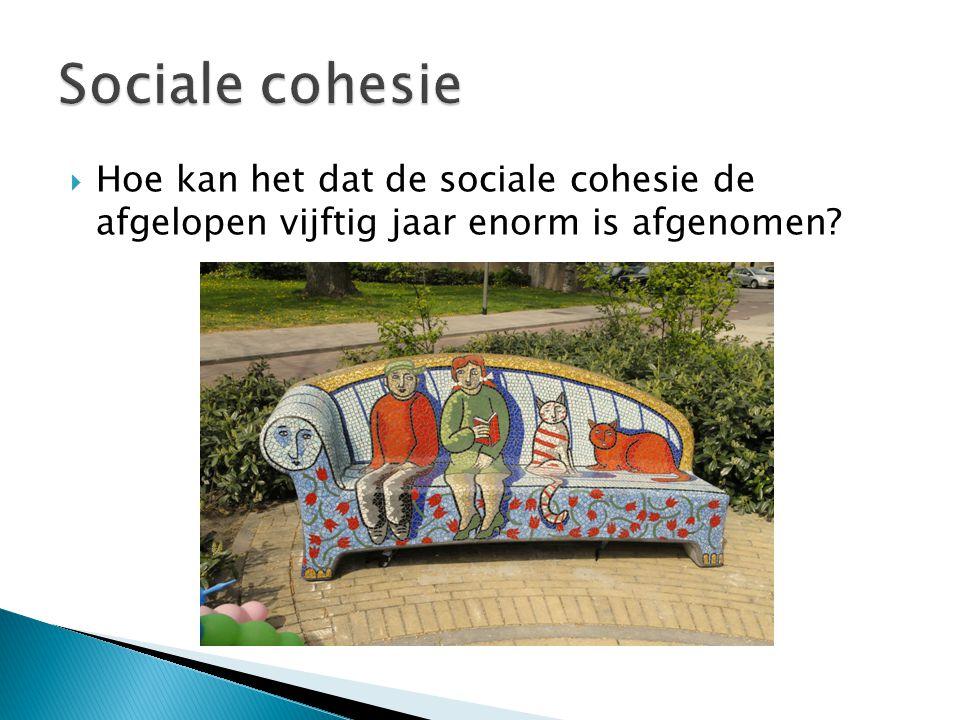  Hoe kan het dat de sociale cohesie de afgelopen vijftig jaar enorm is afgenomen?