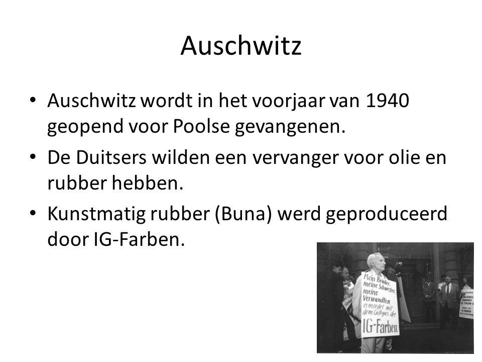 Auschwitz wordt in het voorjaar van 1940 geopend voor Poolse gevangenen. De Duitsers wilden een vervanger voor olie en rubber hebben. Kunstmatig rubbe