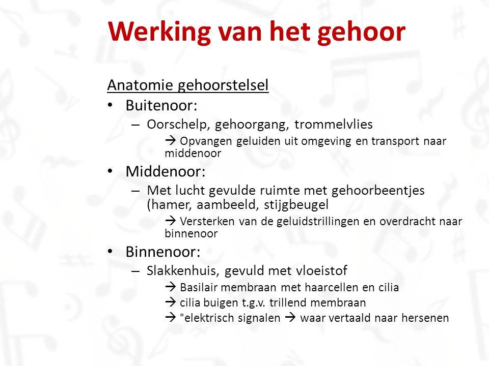 Werking van het gehoor Anatomie gehoorstelsel Buitenoor: – Oorschelp, gehoorgang, trommelvlies  Opvangen geluiden uit omgeving en transport naar midd