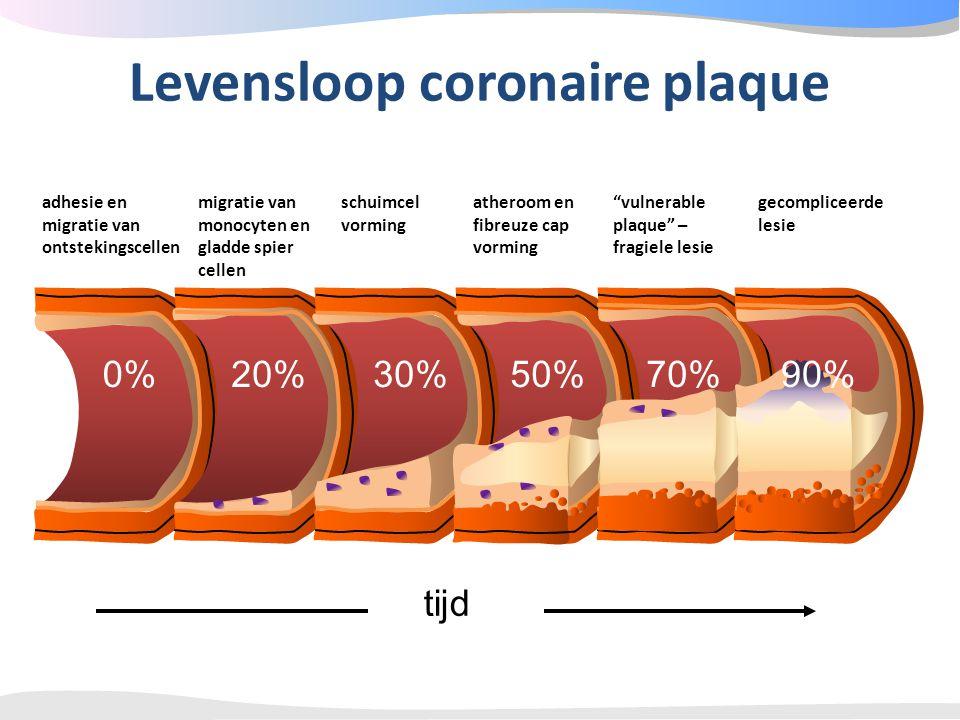 tijd Levensloop coronaire plaque adhesie en migratie van ontstekingscellen 0% migratie van monocyten en gladde spier cellen 20% schuimcel vorming 30%