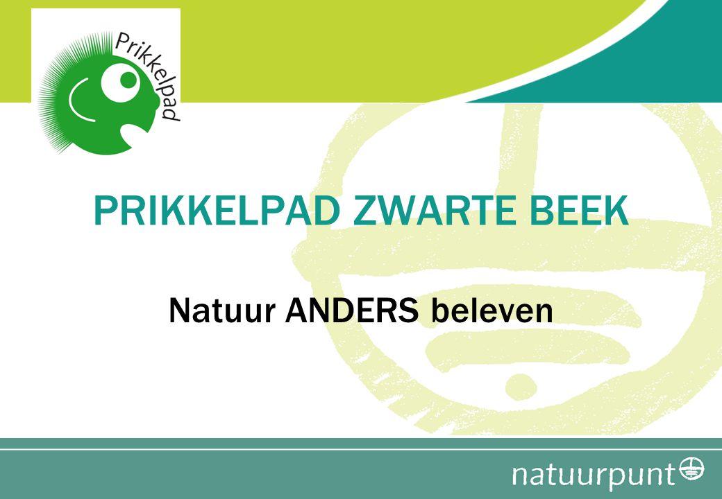 Info : www.zwartebeek.bewww.zwartebeek.be