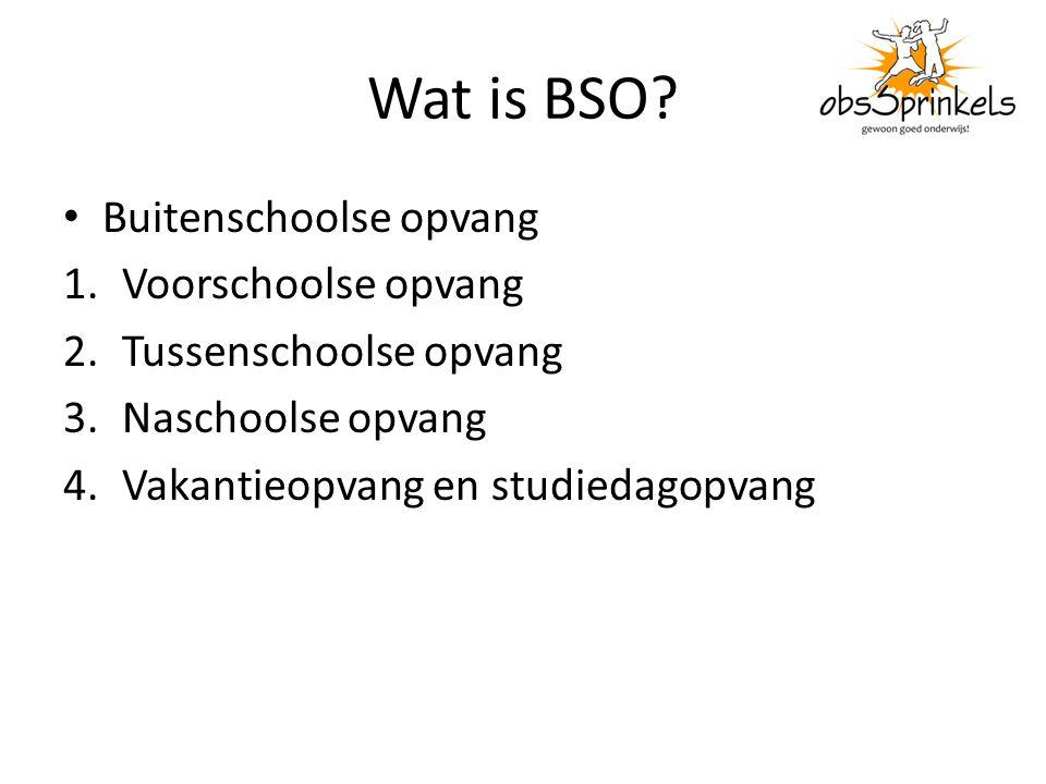 Wat is BSO? Buitenschoolse opvang 1.Voorschoolse opvang 2.Tussenschoolse opvang 3.Naschoolse opvang 4.Vakantieopvang en studiedagopvang