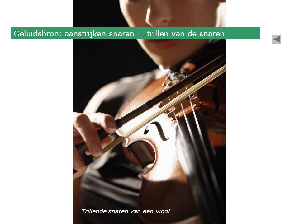 Geluidsbron: aanstrijken snaren  trillen van de snaren Trillende snaren van een viool