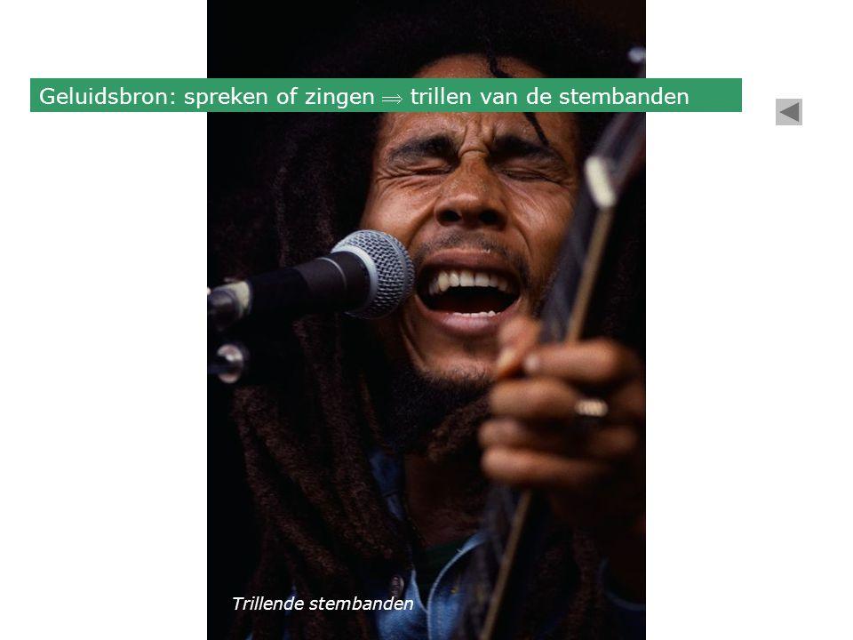 Geluidsbron: spreken of zingen  trillen van de stembanden Trillende stembanden
