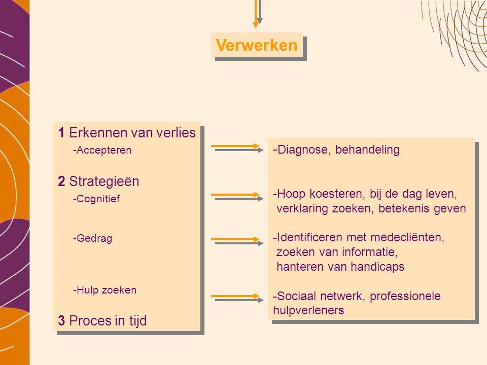 1 Erkennen van verlies -Accepteren 2 Strategieën -Cognitief -Gedrag -Hulp zoeken 3 Proces in tijd 1 Erkennen van verlies -Accepteren 2 Strategieën -Co