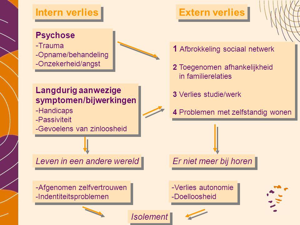 Psychose - Trauma -Opname/behandeling -Onzekerheid/angst Langdurig aanwezige symptomen/bijwerkingen - Handicaps -Passiviteit -Gevoelens van zinlooshei