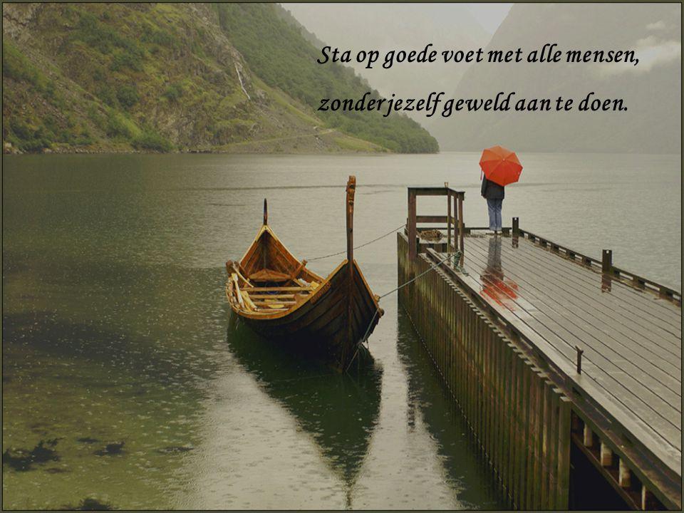 Wees kalm temidden van het lawaai en de haast en bedenk, welk vrede er in de stilte kan heersen.