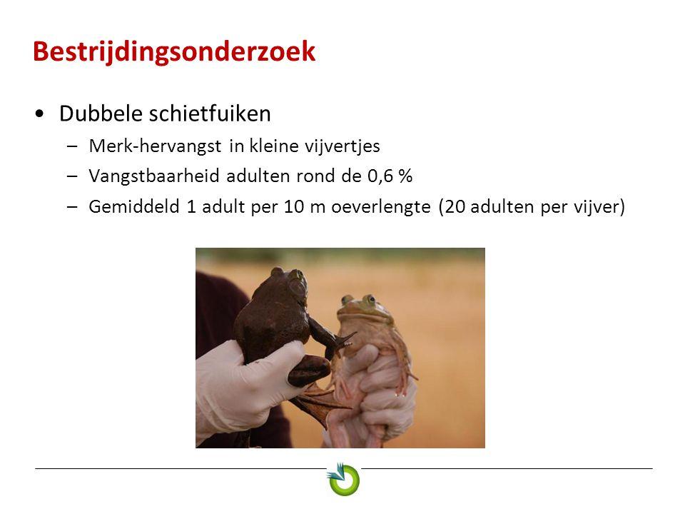 Bestrijdingsonderzoek Dubbele schietfuiken –Merk-hervangst in kleine vijvertjes –Vangstbaarheid adulten rond de 0,6 % –Gemiddeld 1 adult per 10 m oeve