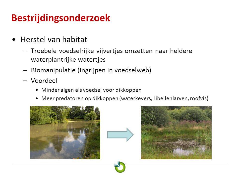 Bestrijdingsonderzoek Herstel van habitat –Troebele voedselrijke vijvertjes omzetten naar heldere waterplantrijke watertjes –Biomanipulatie (ingrijpen