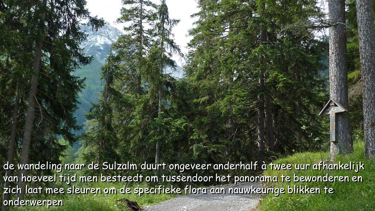 in Stockach vertrekken we aan het Lechtalhaus richting Sulzalm