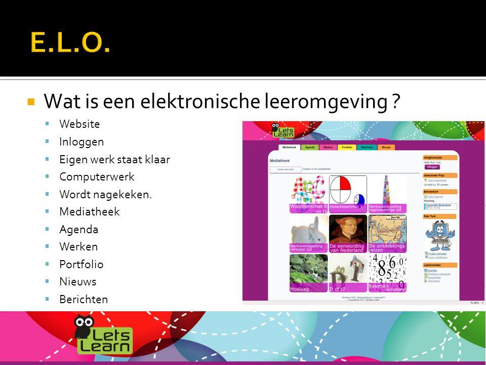  Wat is een elektronische leeromgeving .