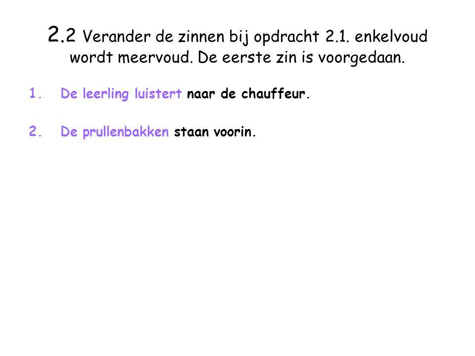 2.2 Verander de zinnen bij opdracht 2.1. enkelvoud wordt meervoud.