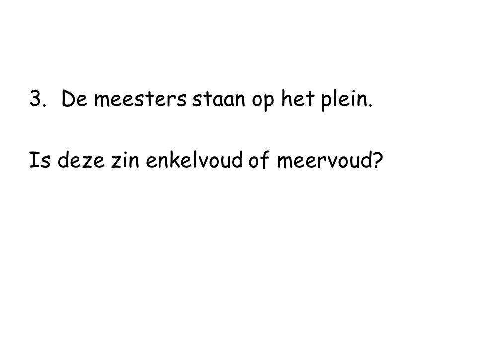 3.De meesters staan op het plein. Is deze zin enkelvoud of meervoud?