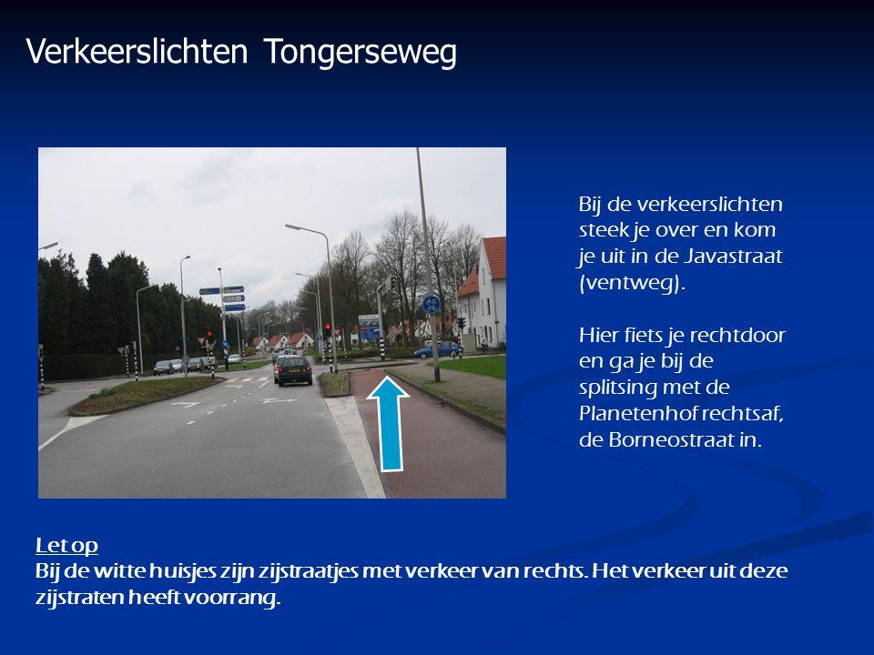 Verkeerslichten Tongerseweg Bij de verkeerslichten steek je over en kom je uit in de Javastraat (ventweg). Hier fiets je rechtdoor en ga je bij de spl