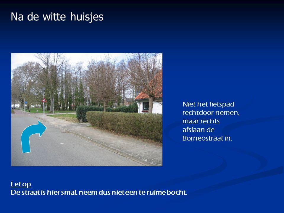 Na de witte huisjes Let op De straat is hier smal, neem dus niet een te ruime bocht. Niet het fietspad rechtdoor nemen, maar rechts afslaan de Borneos