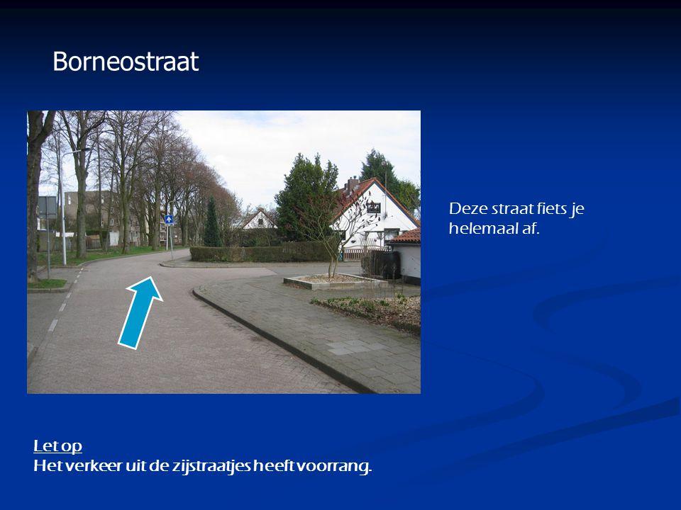 Borneostraat Let op Het verkeer uit de zijstraatjes heeft voorrang. Deze straat fiets je helemaal af.