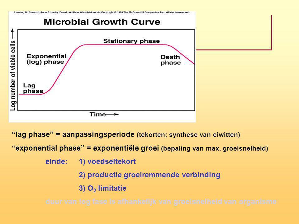 """lag phase"" = aanpassingsperiode (tekorten; synthese van eiwitten) ""exponential phase"" = exponentiële groei (bepaling van max. groeisnelheid) einde:1)"