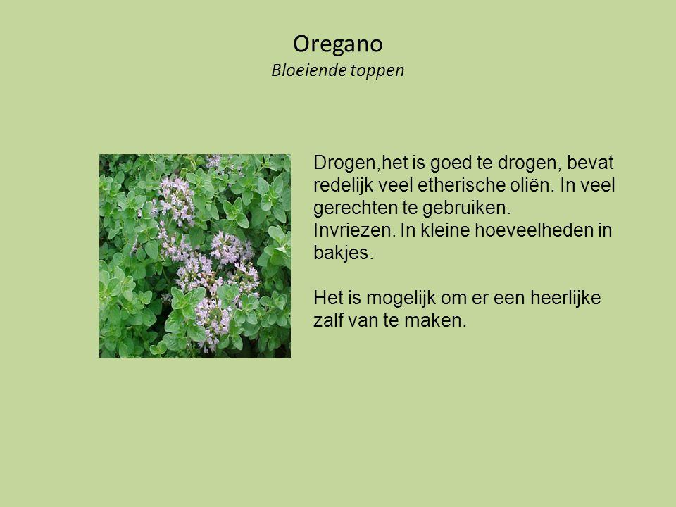 Oregano Bloeiende toppen Drogen,het is goed te drogen, bevat redelijk veel etherische oliën. In veel gerechten te gebruiken. Invriezen. In kleine hoev