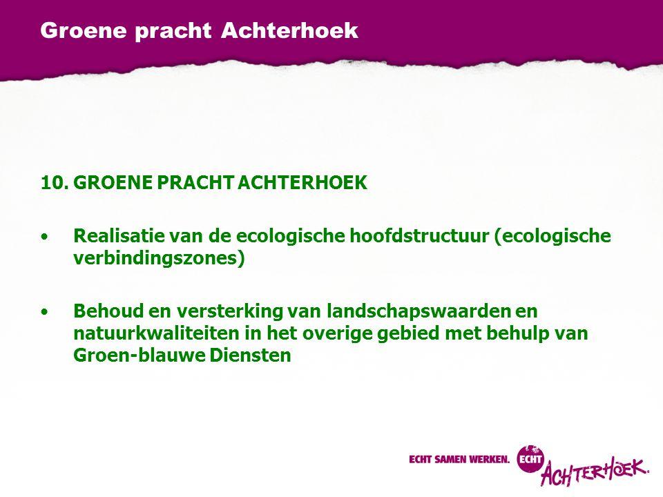 Groene pracht Achterhoek 10.GROENE PRACHT ACHTERHOEK Realisatie van de ecologische hoofdstructuur (ecologische verbindingszones) Behoud en versterking van landschapswaarden en natuurkwaliteiten in het overige gebied met behulp van Groen-blauwe Diensten