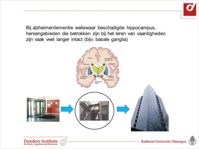 Bij alzheimerdementie weliswaar beschadigde hippocampus, hersengebieden die betrokken zijn bij het leren van vaardigheden zijn vaak veel langer intact