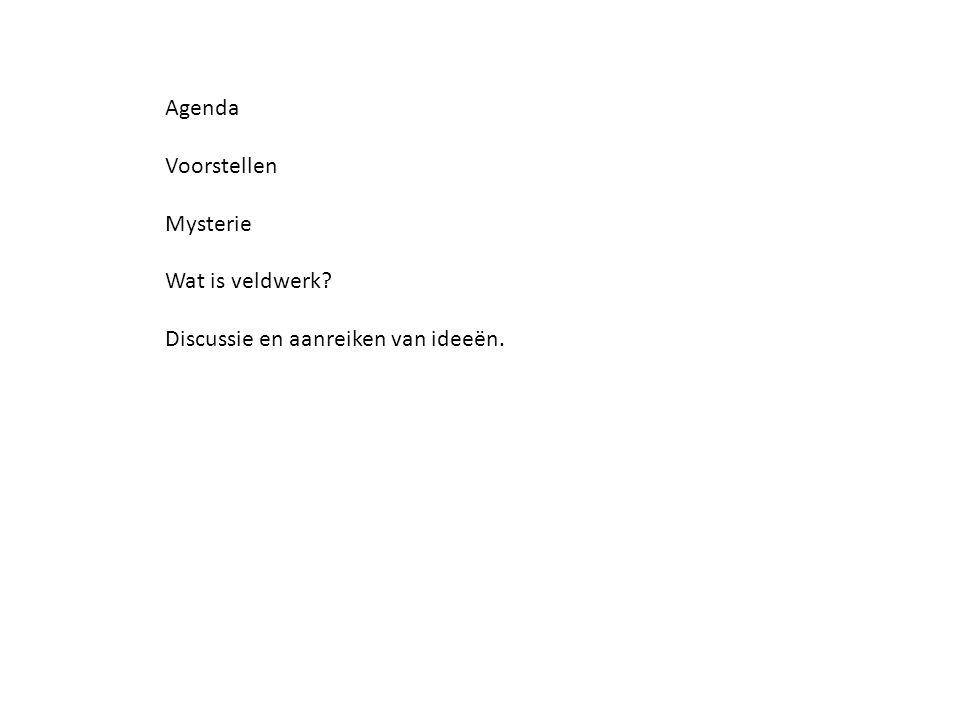 Agenda Voorstellen Mysterie Wat is veldwerk? Discussie en aanreiken van ideeën.