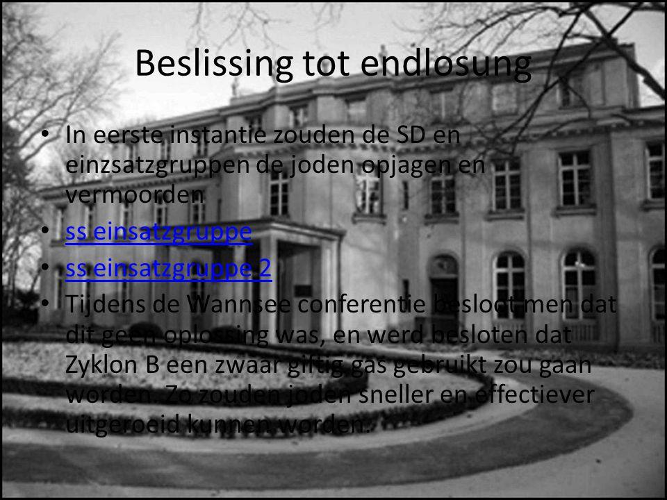In eerste instantie zouden de SD en einzsatzgruppen de joden opjagen en vermoorden ss einsatzgruppe ss einsatzgruppe 2 Tijdens de Wannsee conferentie besloot men dat dit geen oplossing was, en werd besloten dat Zyklon B een zwaar giftig gas gebruikt zou gaan worden.