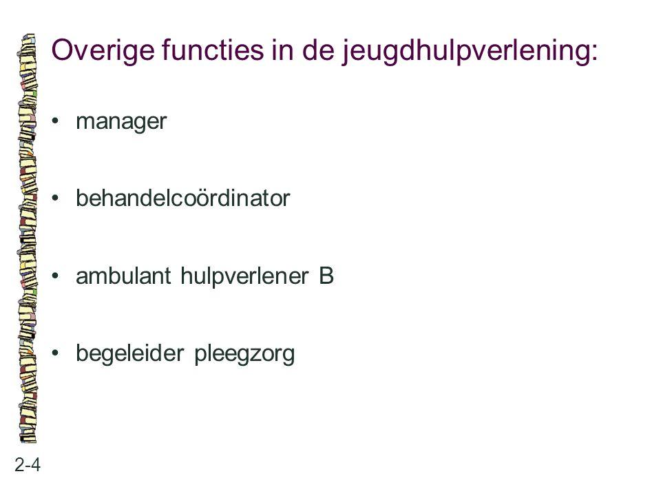 Overige functies in de jeugdhulpverlening: 2-4 manager behandelcoördinator ambulant hulpverlener B begeleider pleegzorg