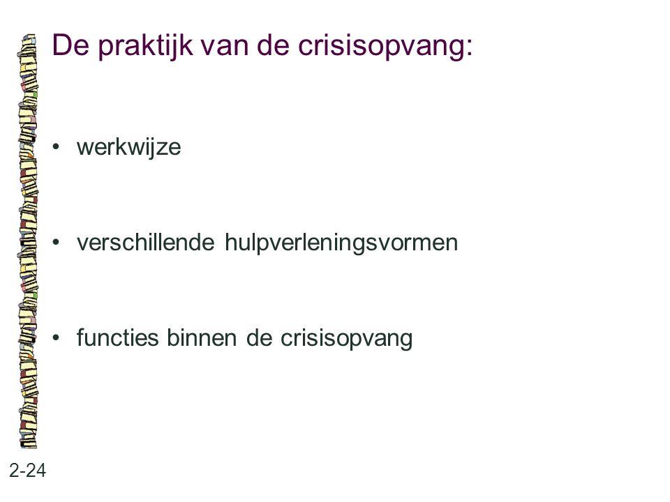 De praktijk van de crisisopvang: 2-24 werkwijze verschillende hulpverleningsvormen functies binnen de crisisopvang