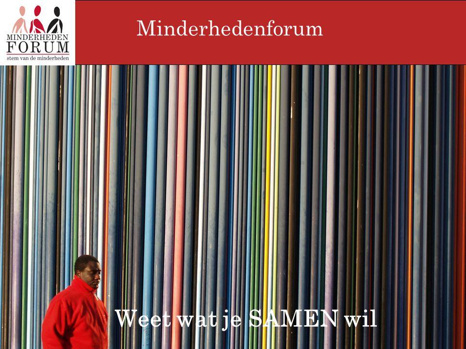 Inleiding 1.Het allochtoon middenveld 2.De 'federaties' 3.Het Minderhedenforum 4.Interculturele Rol?