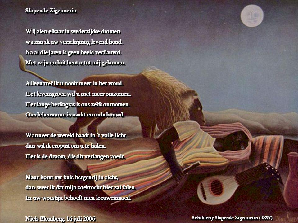 Slapende Zigeunerin Wij zien elkaar in wederzijdse dromen waarin ik uw verschijning levend houd.
