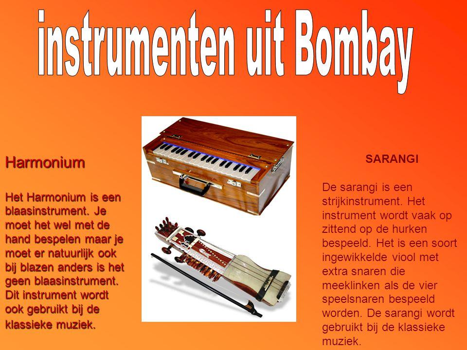 SARANGI De sarangi is een strijkinstrument.