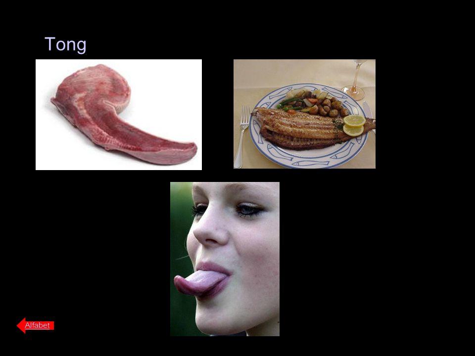 Tong Alfabet