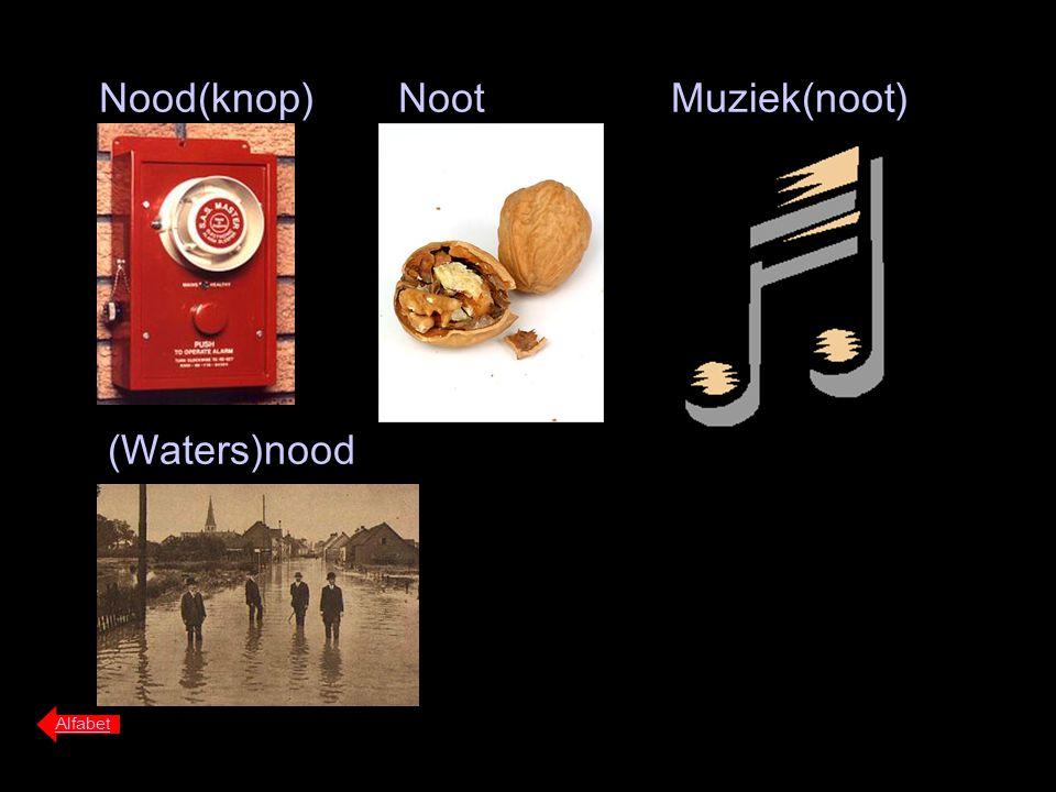 Nood(knop) Alfabet Noot (Waters)nood Muziek(noot)