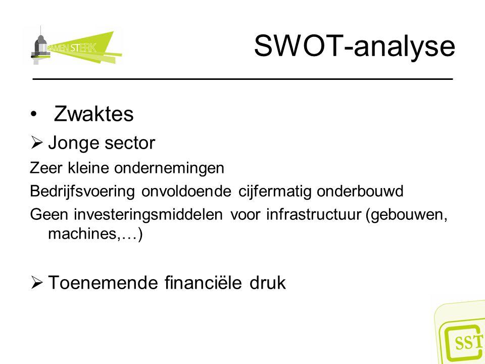 SWOT-analyse Zwaktes  Jonge sector Zeer kleine ondernemingen Bedrijfsvoering onvoldoende cijfermatig onderbouwd Geen investeringsmiddelen voor infras
