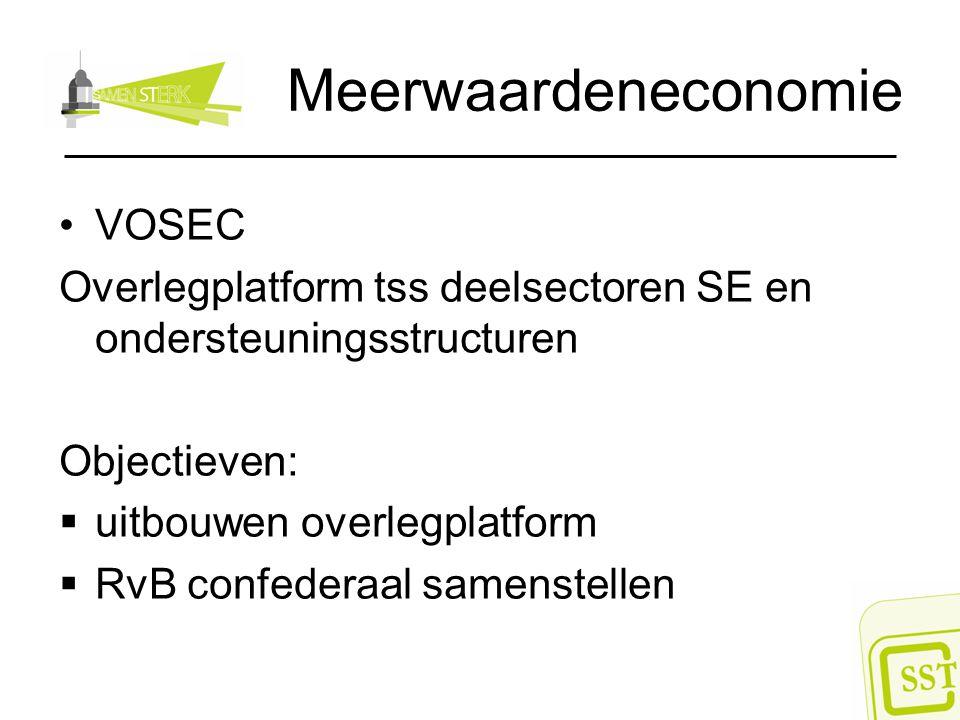 Meerwaardeneconomie VOSEC Overlegplatform tss deelsectoren SE en ondersteuningsstructuren Objectieven:  uitbouwen overlegplatform  RvB confederaal s