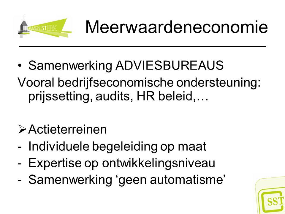 Meerwaardeneconomie Samenwerking ADVIESBUREAUS Vooral bedrijfseconomische ondersteuning: prijssetting, audits, HR beleid,…  Actieterreinen -Individue