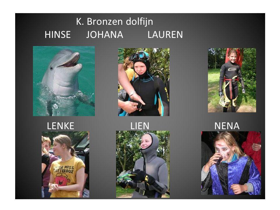 Dolfijntjes overzicht Brons Zilver Goud Ingeschaalde 1 sterren