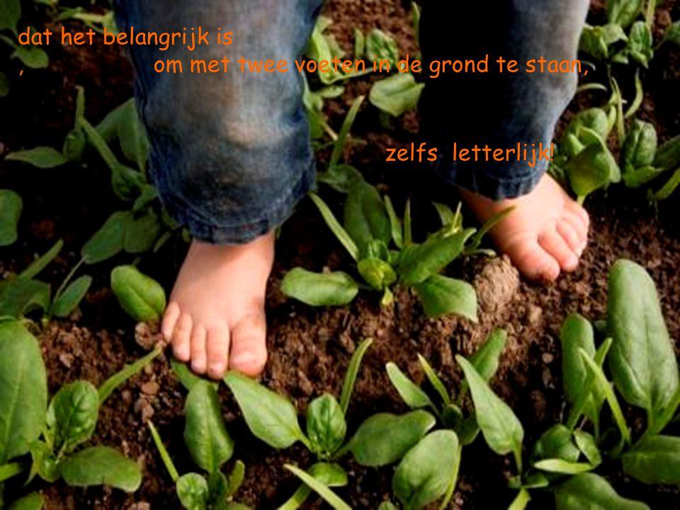 dat het belangrijk is, om met twee voeten in de grond te staan, zelfs letterlijk!
